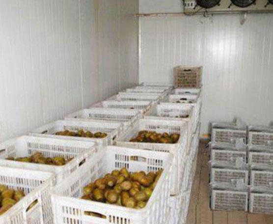 貴州水果冷庫安裝